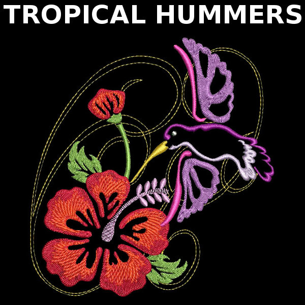 Tropical Hummers